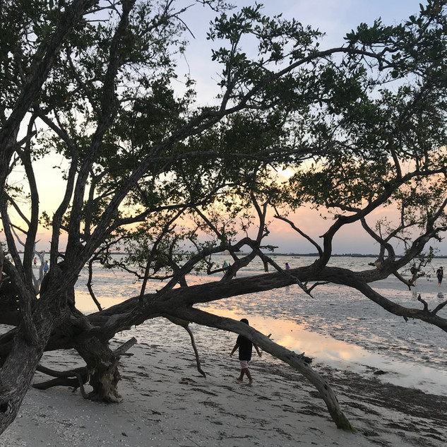 lighthouse beach sanibel island_0636