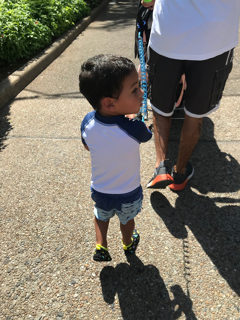 Wearing water clothes and shoes for SeaWorld Orlando Trip