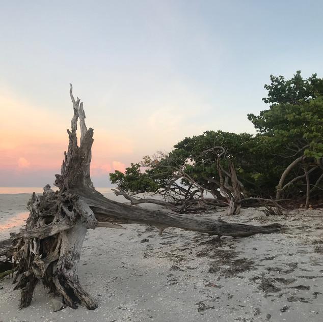lighthouse beach sanibel island_0654