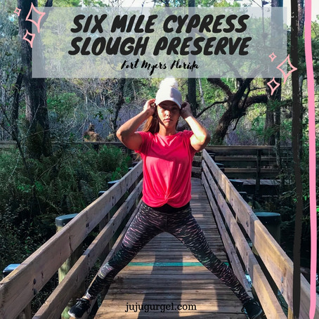 Six Mile Cypress Slough Preserve | Exploring Southwest Florida