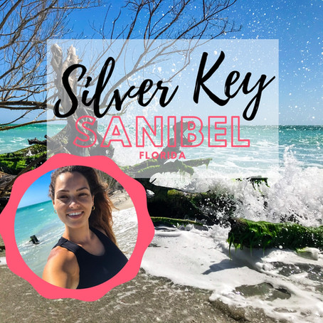 Silver Key Preserve | Sanibel Island, Florida beaches