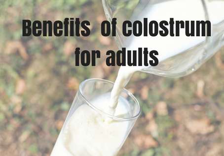 Colostrum for adults