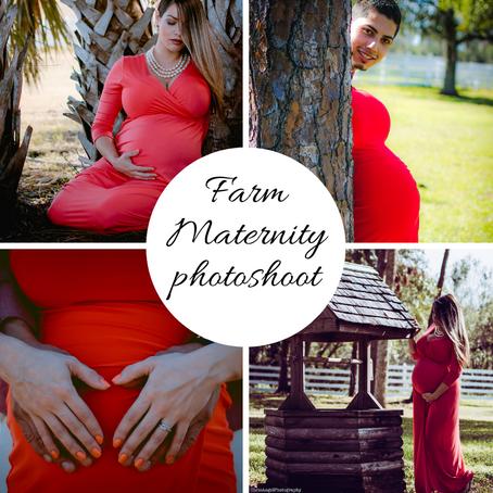 Farm Maternity Photoshoot at North Fort Myers Farm