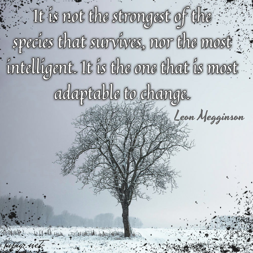 it is not the strongest of the species that survives, nor the most intelligent. it is the one that is most adaptable to change