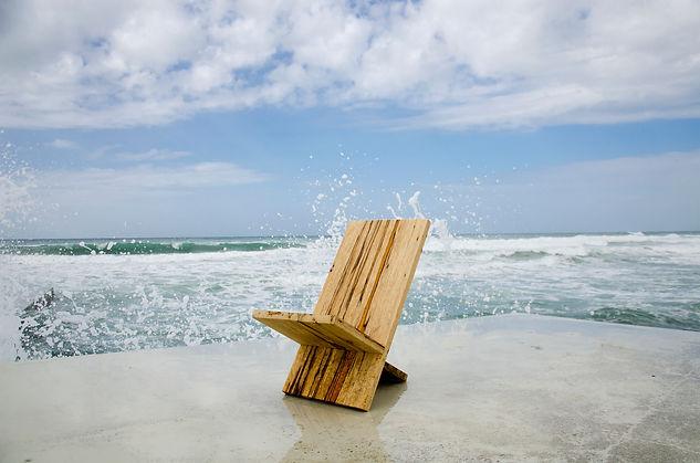 כיסא פרא.jpg