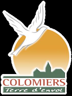 ColomiersVector_CarreQUADRI.png