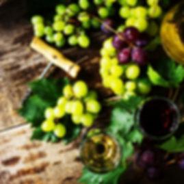 Wine Dinner_edited.jpg
