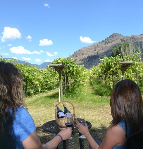 Vineyard Picnic Ladies