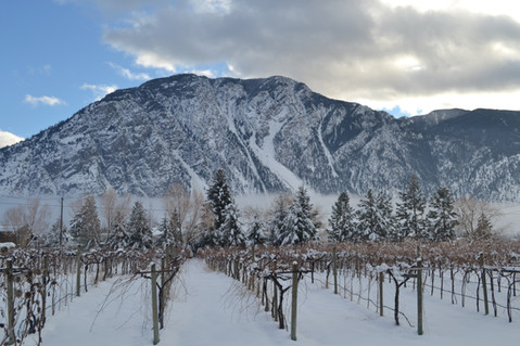 Winter hits the Valley