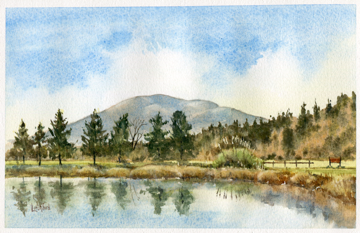 Fishing Lakes Leigh Sinton