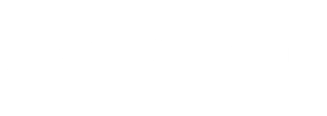 V-Ray_Mentor_logo_W.png