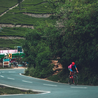 The beauty and challanges from the route of Veloscope Cycling camp in Ooty, Tamilnadu.