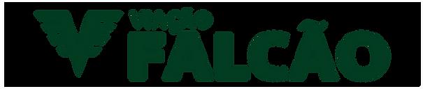 logo_vf_horizontal_mono_transparente.png