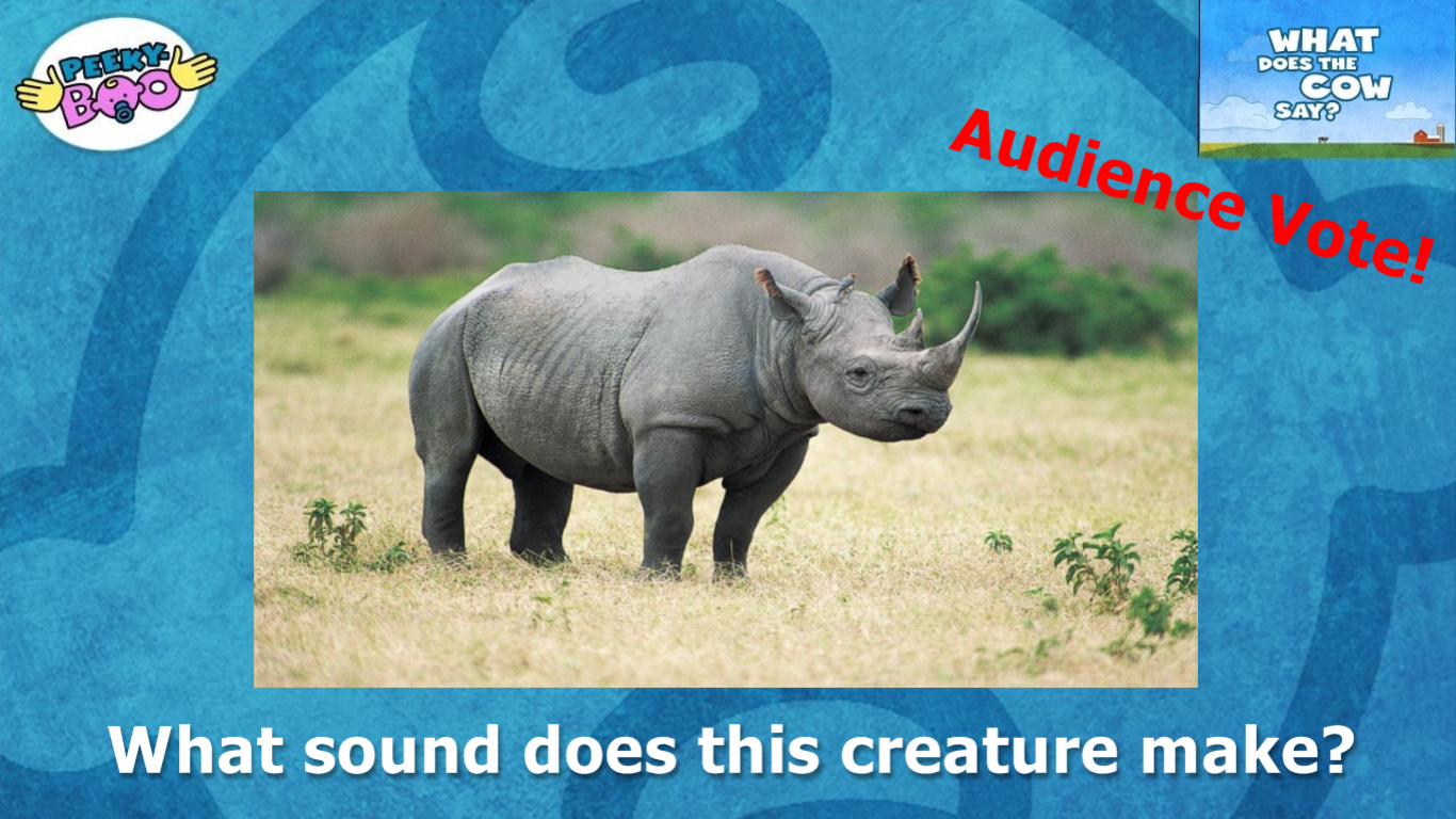 What does a rhino say?