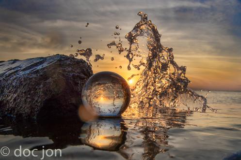 sea horse splash