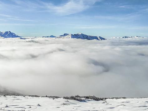 Raus aus dem Nebel – los auf die Skier!