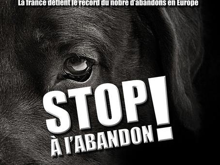 #STOPALABANDON