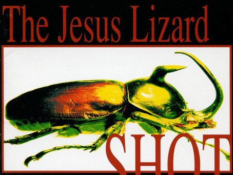 🎈 2️⃣5️⃣ 🤡 - The Jesus Lizard - Shot