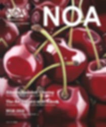 20_NOA_Magazine_Website_Cover.jpg