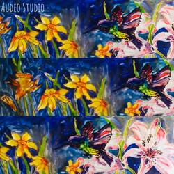 Audeo Studio
