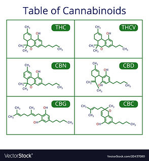 cannabis-skeletal-cbd-formula-marijuana-