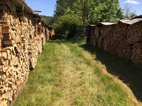 Holzlager Dietikon (4).jpg