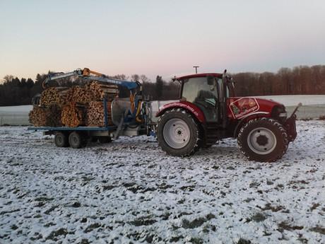 Holzlieferung im Schnee.jpg