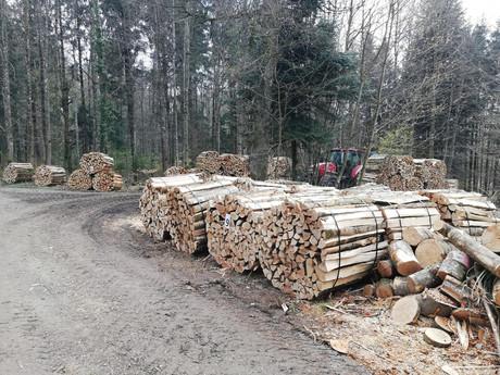 Holzspalten_1m_Spälten.jpg