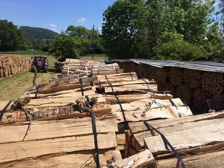 Holzlager Dietikon.jpg