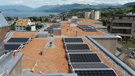 Wädenswil Solaranlage auf Flachdach