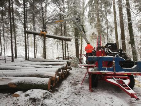Holzspalten im Winter.jpg