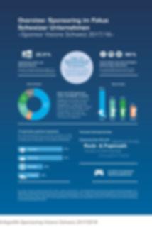 Infografik Sponsor Visions Schweiz 2017_