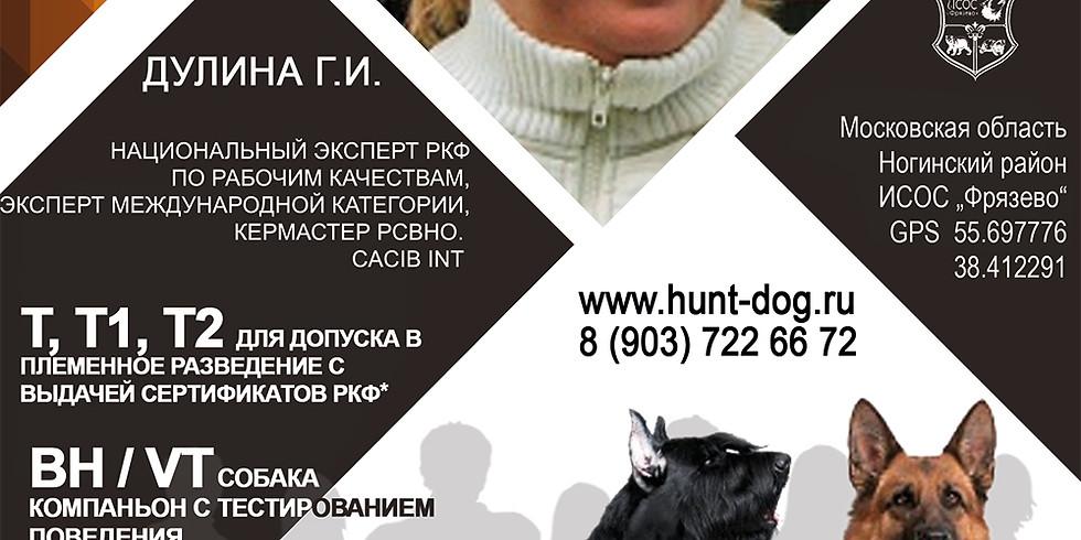 Тестирование собак Т, Т1, Т2 и  BH/VT (собака компаньон с тестированием поведения)