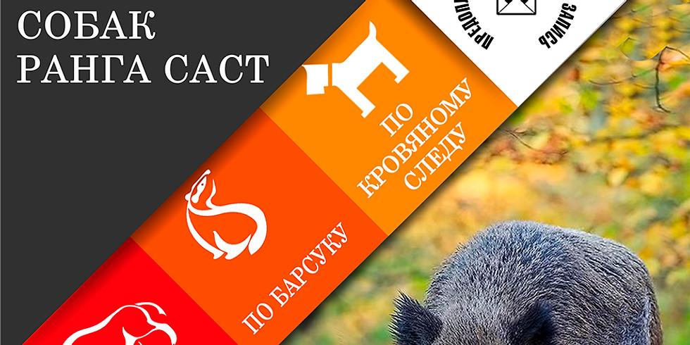 Cертификатные состязания охотничьих собак ранга САСТ по кабану, водоплавающей птице и кровяному следу