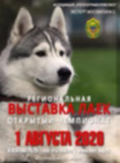 ВЫСТАВКА ЛАЕК.jpg