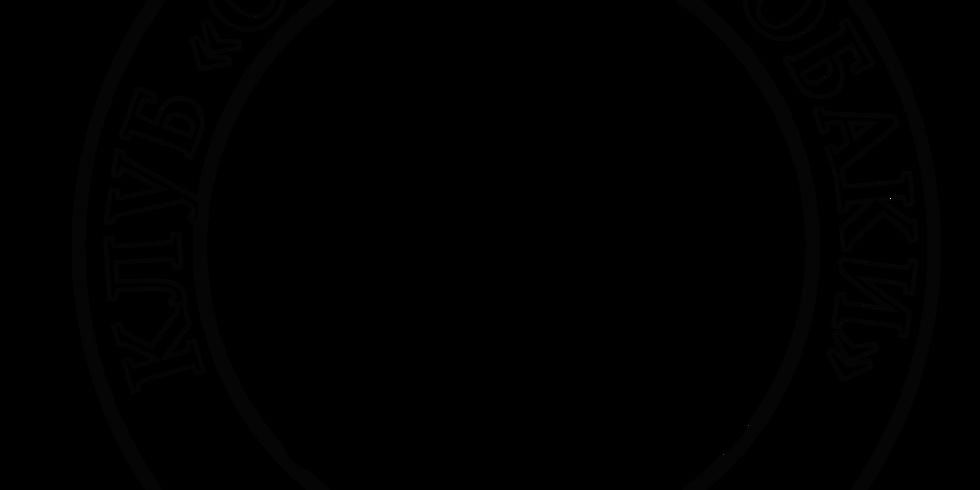 Состязания ретриверов по розыску и подаче битой дичи