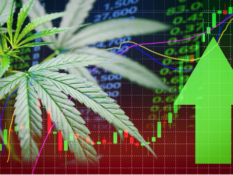 ESG & The Cannabis Industry:Growing a Competitive Advantage – From Cultivation to Consumption