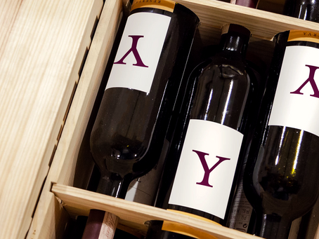 Case or Bottle:  A Guide to Buying Wine