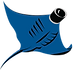 small_videoray logo.png