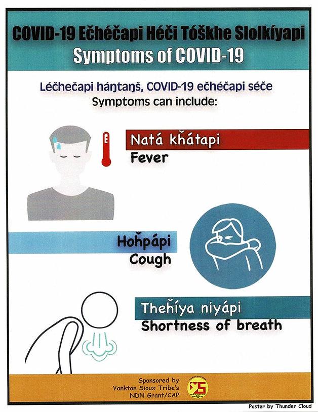 NDN-CDC Poster YST.jpg