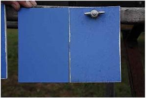 カイム塗料 グラニタル 外壁塗料 暴露試験