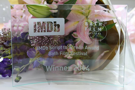 IMDb Script to Screen Award 2014 Rick Limentani Winner