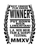 LA Neo Noir Film and Script Festival Award Winner Put Down