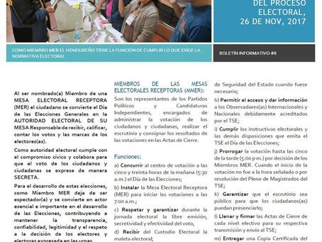 Boletín Informativo No. 8