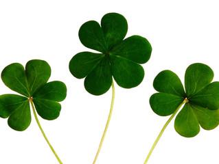 Healthy Twists On Irish Tradition
