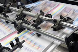 Print MIS Software