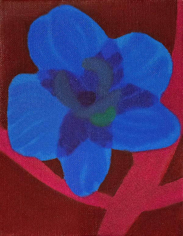 a blue.jpg