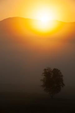 Variations on a Sunrise