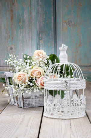 Vintage birdcage, beautiful pink roses a