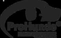 Logo ab JHV 2019 mit Name.png